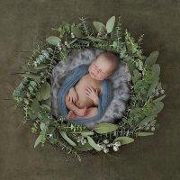 Baby :: Оксана Сердюкова