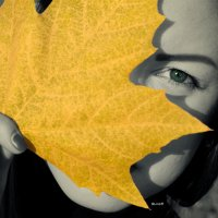 Осень :: Любовь Борисова