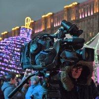 Работа такая, гулять некогда! :: Татьяна Помогалова