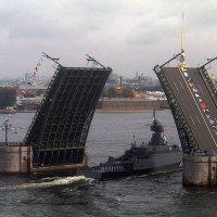 День ВМФ в Петербурге. :: Виктор Егорович