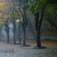 В лёгком тумане...... :: Юрий Цыплятников