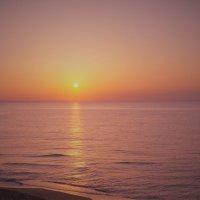 В лучах нежного восхода :: Swetlana V