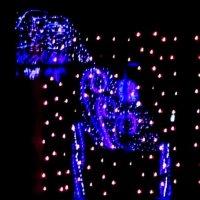 Новогоднее убранство. :: Наталья Золотых-Сибирская