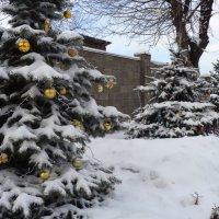 Рождественский пейзаж!... :: Алекс Аро Аро