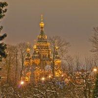 Рождественский Сочельник :: bajguz igor