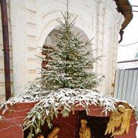 С Рождеством Христовым! :: Андрей K.