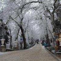 Рождественский Железноводск :: Сергей