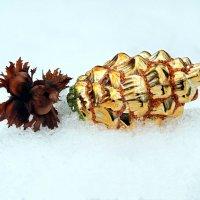 Три орешка для белочки.. :: Андрей Заломленков