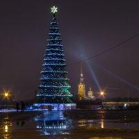 Новогодний вид на Петропавловскую крепость :: Марина Ножко