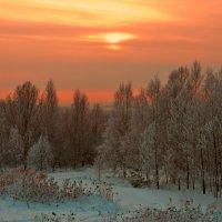 Рожденственский Вечер :: Владимир Куликов