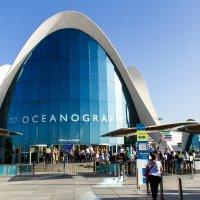 Океанографический парк :: Дмитрий Сиялов