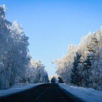 Летя в сверкающую даль, Находим этот снежный рай, Как образ дремлющей красы... :: Надежда