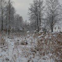 Немного снега в нашем городе :: Сергей Клюев