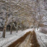 зимняя дорога :: юрий иванов
