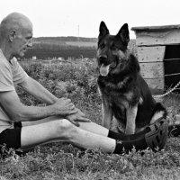 Жизнь собачья... :: Евгений Юрков