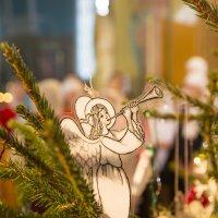 С Рождеством! :: Андрей Студеникин