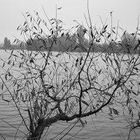 Осенний берег. :: Андрий Майковский