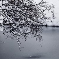 Озеро :: Ирина Масальская