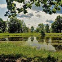 Чарующее лето... :: Sergey Gordoff