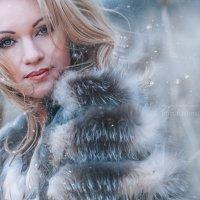 Метель. :: Ирина Биф