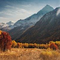 Осень в Алибекском ущелье... :: Аnatoly Gaponenko
