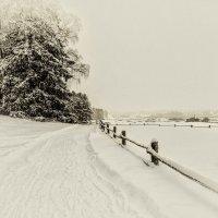 Зима :: Alexandre Andreev