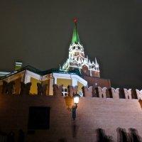 у Кремля :: Елена