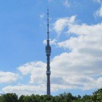 Останкинская башня :: Вера Щукина