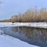 Тёплая зима . :: юрий Амосов