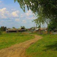 Где шумят листвой берёзки у околицы :: Сергей Чиняев
