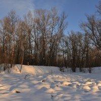 Снежный уголок :: юрий Амосов