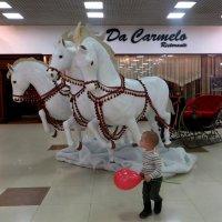 Три белых коня :: Татьяна Смоляниченко