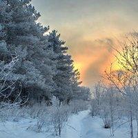 Морозный вечер :: Дмитрий