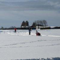Один день зимы... :: Mariya laimite