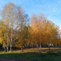 Золотая осень :: Александр Подгорный