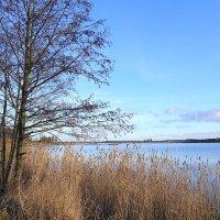 Форелевое озеро в январе :: Маргарита Батырева