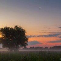 Рассвет в поле :: Игорь Сарапулов