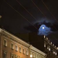 Небольшое петербургское  привидение :: Людмила Волдыкова