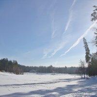 Морозно и солнечно :: Лидия (naum.lidiya)