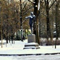 Маэстро зимой  1 :: Сергей