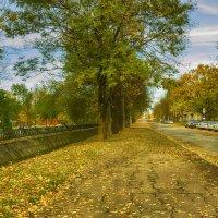 Осень в городе :: leo yagonen