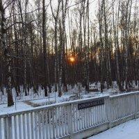 На ст.м. Измайловская солнце садилось :: Андрей Лукьянов