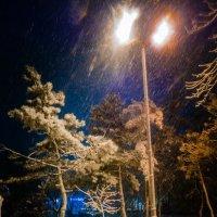 Снег кружится :: Анатолий Шулков