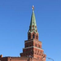Боровицкая башня кремля :: Вера Щукина