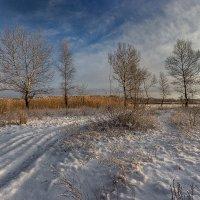 О зимней красоте... :: Павел Петрович Тодоров