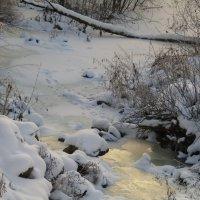 Следы неведомых зверей на льду застывшего потока. :: Сергей Чернышев