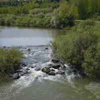река Барзас :: Ирина Русакова