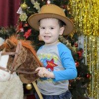 Я люблю свою лошадку... :: Ольга Русакова
