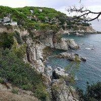 Море, берег, скалы :: Olga F