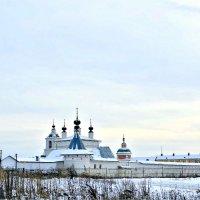 Свято-Троицкий женский Белопесоцкий монастырь. :: Михаил Столяров